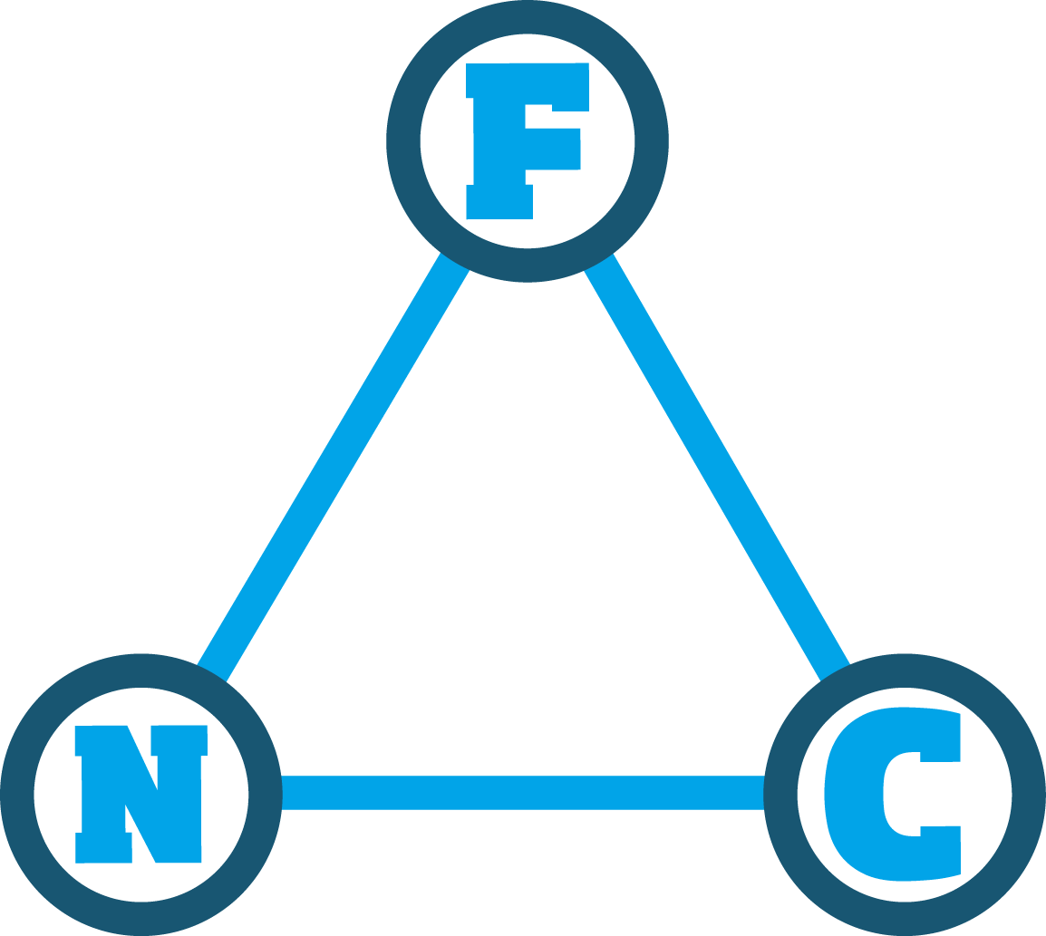 FNC (International Conference on Future Networks and Communications)